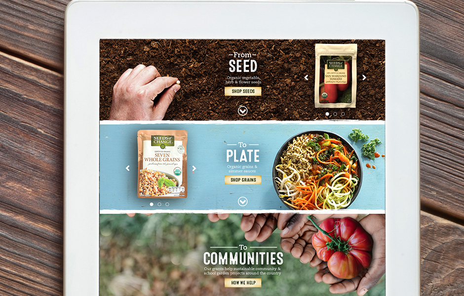 p-SOC_elements_home_seedtoplate